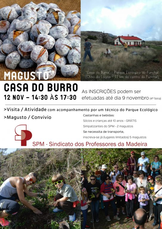 magusto_2016_3